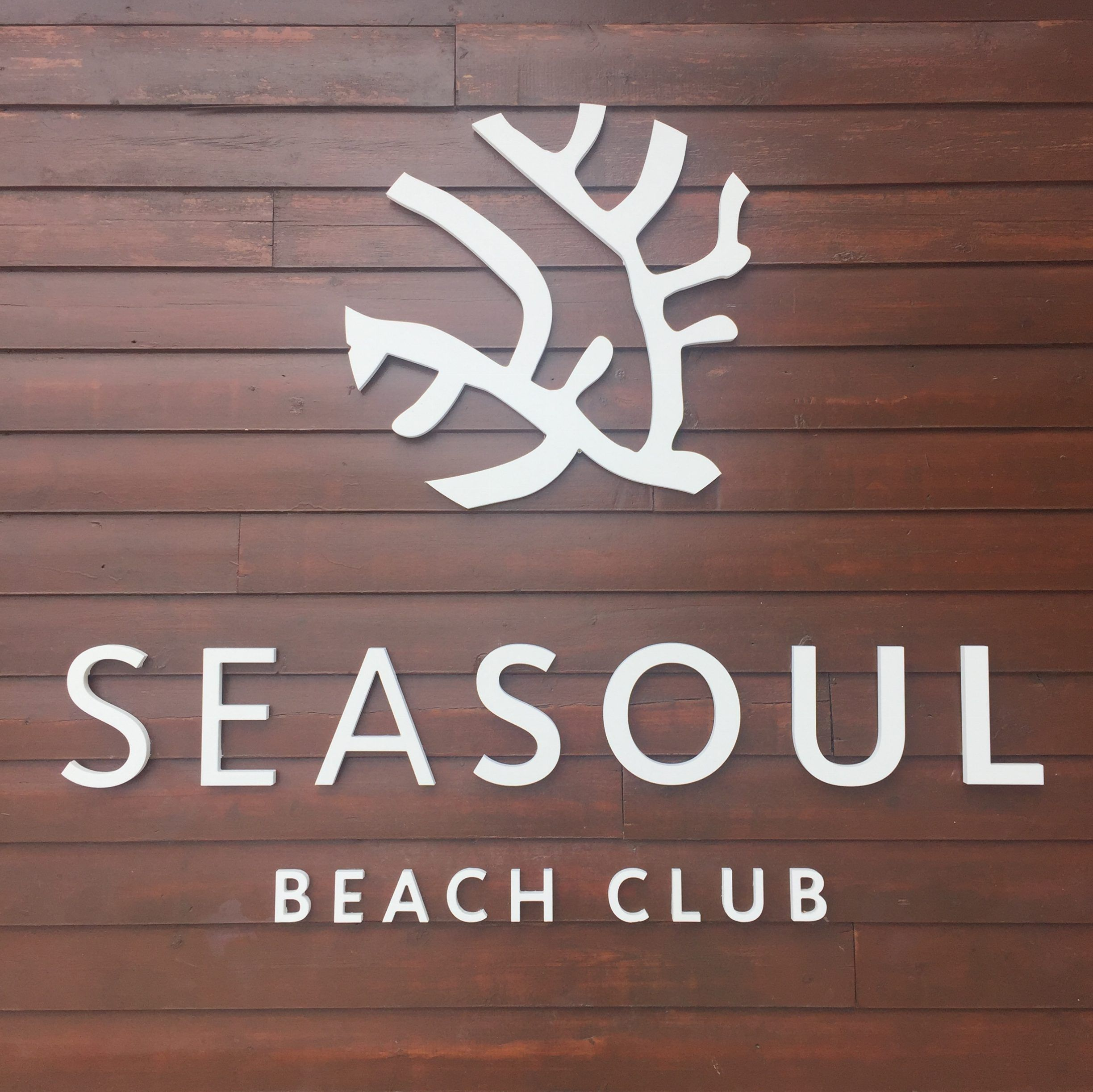 Seasoul Beach de Ciudad Blanca, un plan perfecto de domingo